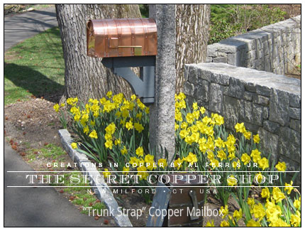 Custom Copper Trunk-Strap Mailbox